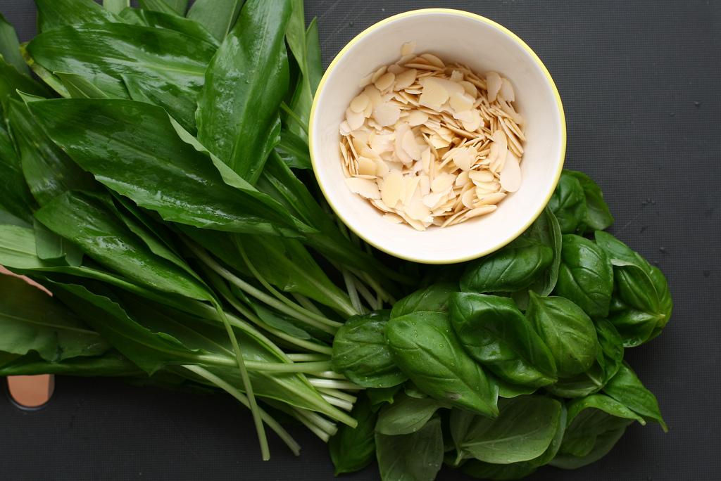 Pesto - medvědí česnek a bazalka